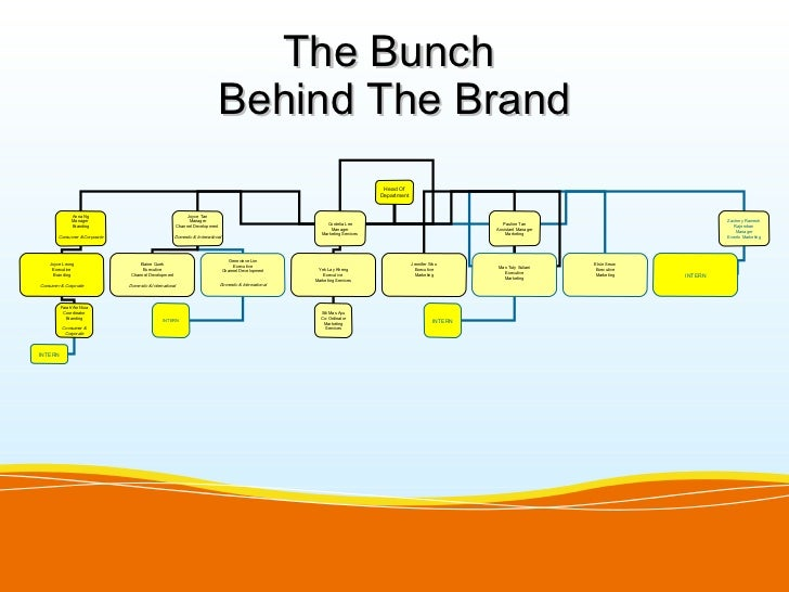 The Bunch                                                                            Behind The Brand                     ...
