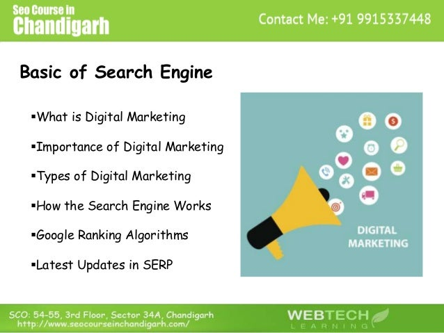 Basic of Search Engine What is Digital Marketing Importance of Digital Marketing Types of Digital Marketing How the Se...