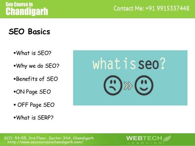 SEO Basics What is SEO? Why we do SEO? Benefits of SEO ON Page SEO  OFF Page SEO What is SERP?