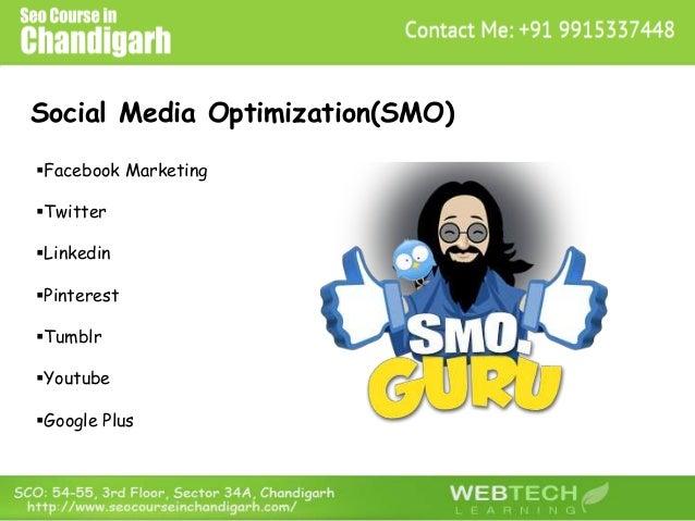 Social Media Optimization(SMO) Facebook Marketing Twitter Linkedin Pinterest Tumblr Youtube Google Plus