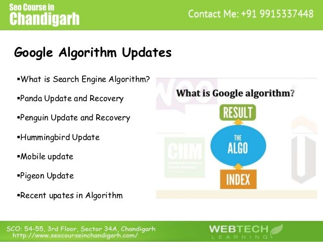 Google Algorithm Updates What is Search Engine Algorithm? Panda Update and Recovery Penguin Update and Recovery Hummin...