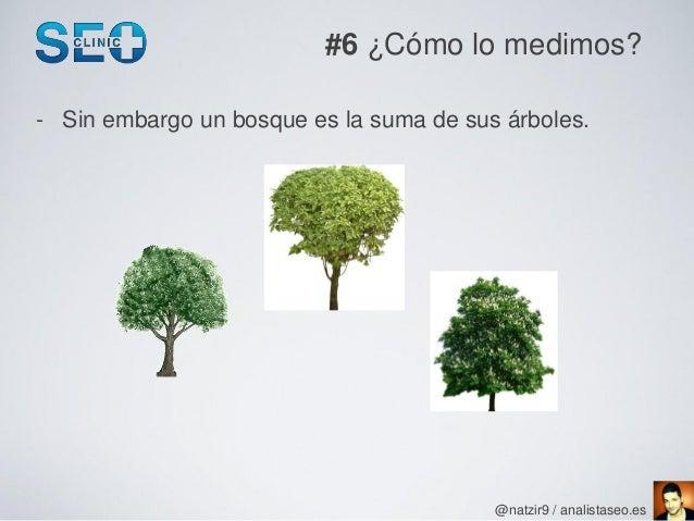 #6 ¿Cómo lo medimos?- Sin embargo un bosque es la suma de sus árboles.                                         @natzir9 / ...