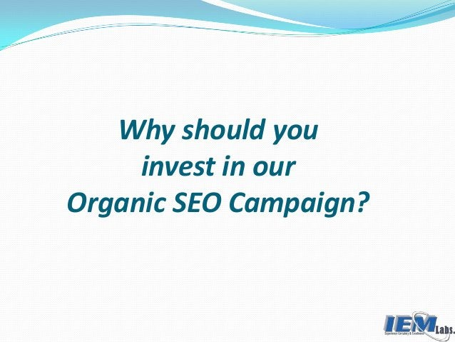 Why should you invest in our Organic SEO Campaign?