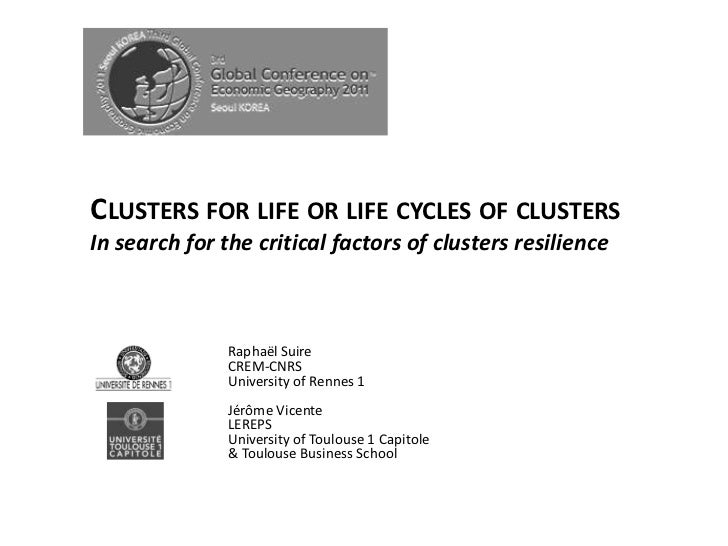 CLUSTERS FOR LIFE OR LIFE CYCLES OF CLUSTERSIn search for the critical factors of clusters resilience               Raphaë...