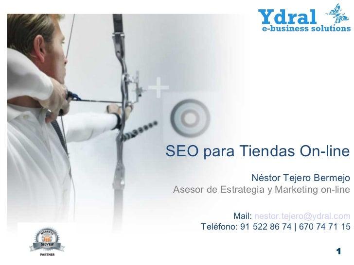 SEO para Tiendas On-line                 Néstor Tejero BermejoAsesor de Estrategia y Marketing on-line              Mail: ...