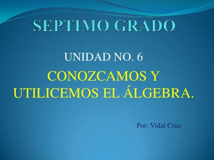 SEPTIMO GRADO<br />UNIDAD NO. 6<br />CONOZCAMOS Y UTILICEMOS EL ÁLGEBRA.<br />Por: Vidal Cruz<br />