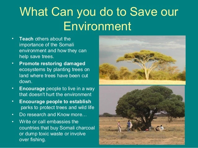 the importance of saving our environment