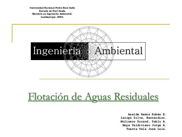 Universidad Nacional Pedro Ruiz Gallo Escuela de Post Grado Maestría en Ingeniería Ambiental. Lambayeque. 2006.  Ingenierí...