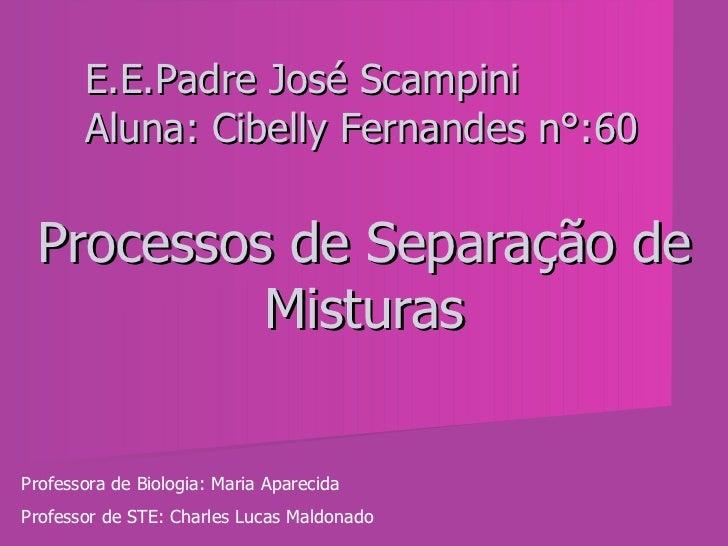 Processos de Separação de Misturas E.E.Padre José Scampini Aluna: Cibelly Fernandes n°:60 Professora de Biologia: Maria Ap...