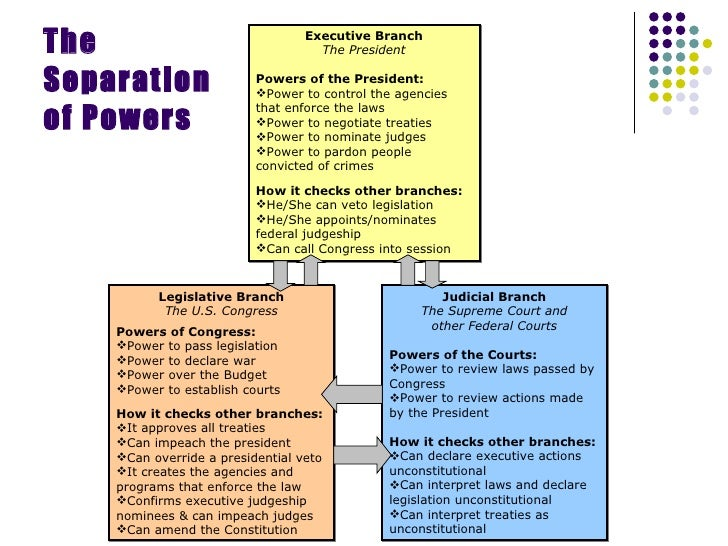 3 Branches Of Government Chart Mersnoforum