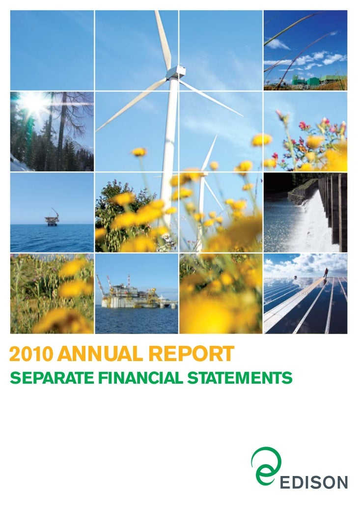 2010 ANNUAL REPORTSEPARATE FINANCIAL STATEMENTS