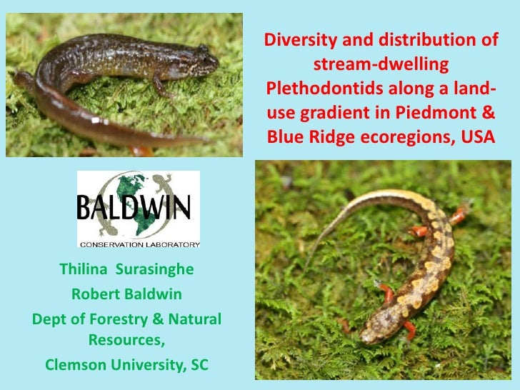 Diversity and distribution of stream-dwelling Plethodontidsalong a land-use gradient in Piedmont & Blue Ridge ecoregions, ...