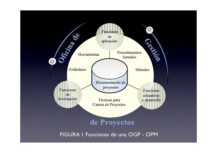 FIGURA I. Funciones de una OGP - OPM
