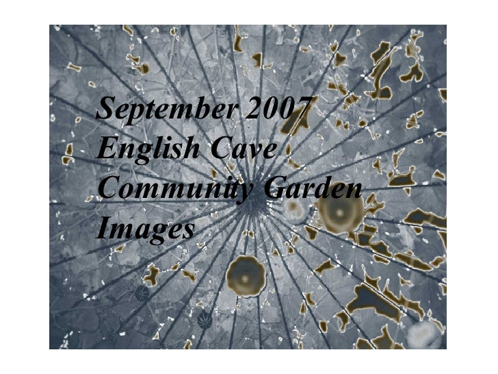 September 2007 English Cave  Community Garden Images