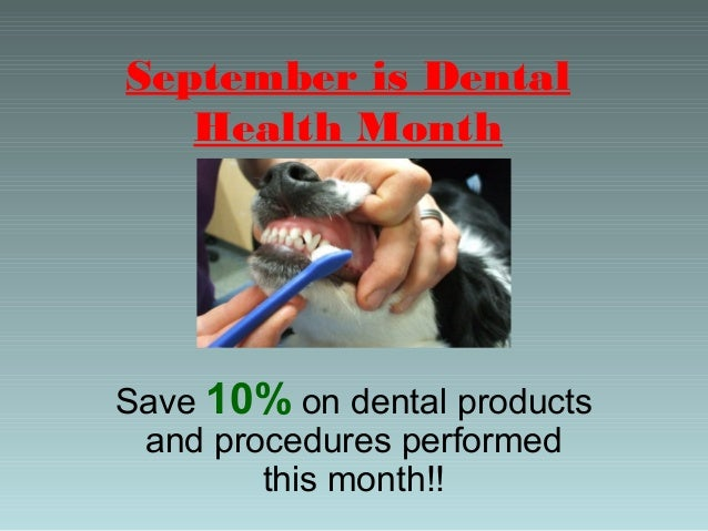 September is Dental Health Month  Save 10% on dental products and procedures performed this month!!