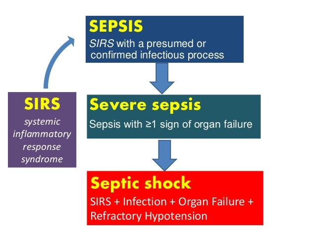 septic shock; latest update, Skeleton