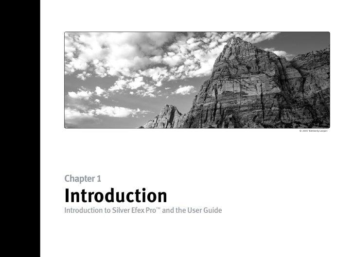 Silver Efex Pro user guide Slide 2