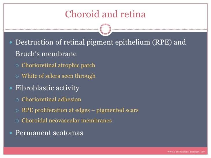Choroid and retina   Destruction of retinal pigment epithelium (RPE) and   Bruch's membrane       Chorioretinal atrophic ...