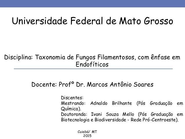 Universidade Federal de Mato Grosso Disciplina: Taxonomia de Fungos Filamentosos, com ênfase em Endofíticos Docente: Profº...
