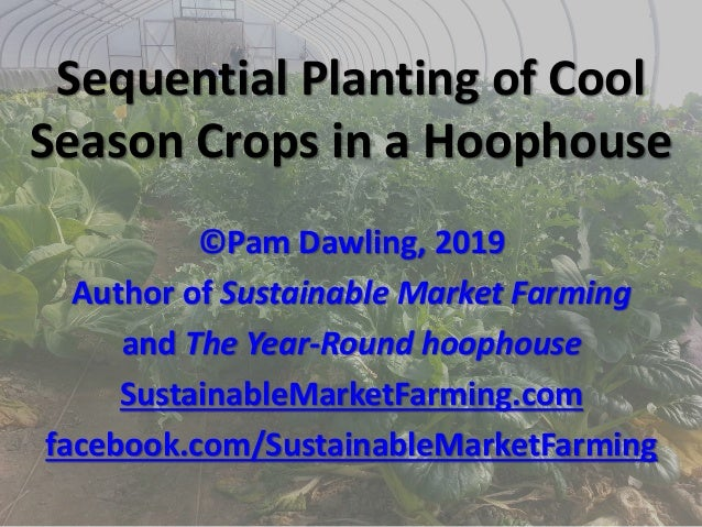 Sequential Planting of Cool Season Crops in a Hoophouse ©Pam Dawling, 2019 Author of Sustainable Market Farming and The Ye...