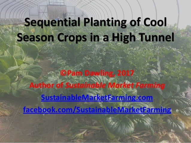 Sequential Planting of Cool Season Crops in a High Tunnel ©Pam Dawling, 2017 Author of Sustainable Market Farming Sustaina...