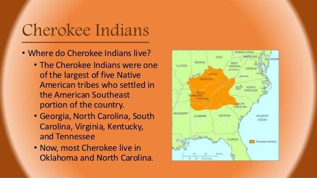 Sequoyah Cherokee Indians 2nd Grade Unit