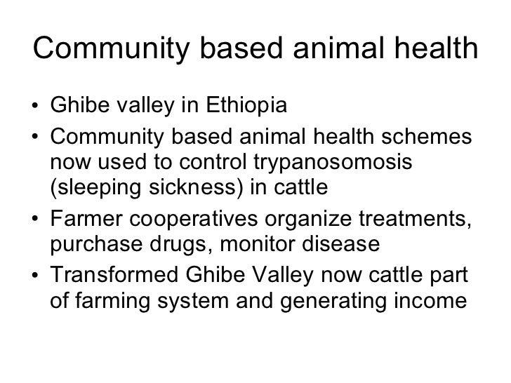 Community based animal health  <ul><li>Ghibe valley in Ethiopia  </li></ul><ul><li>Community based animal health schemes n...