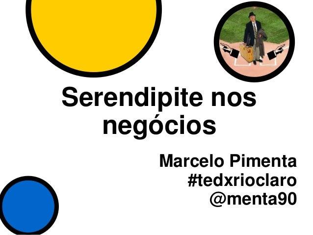 Serendipite nos negócios Marcelo Pimenta #tedxrioclaro @menta90