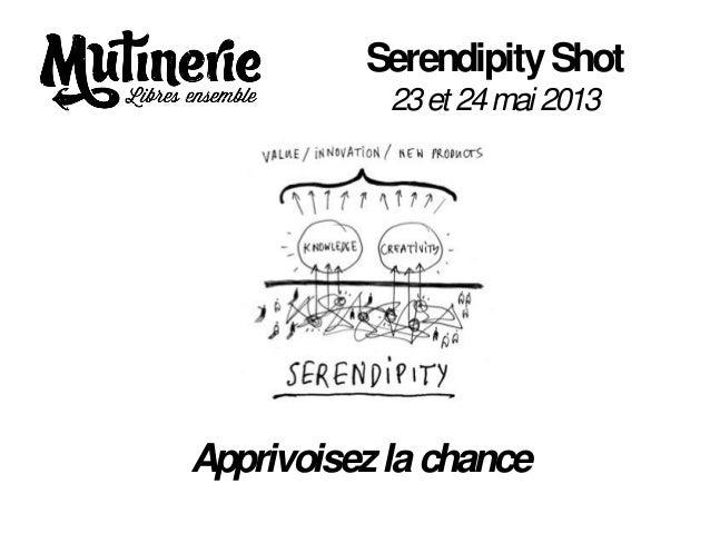 SerendipityShot23et 24mai 2013Apprivoisezlachance