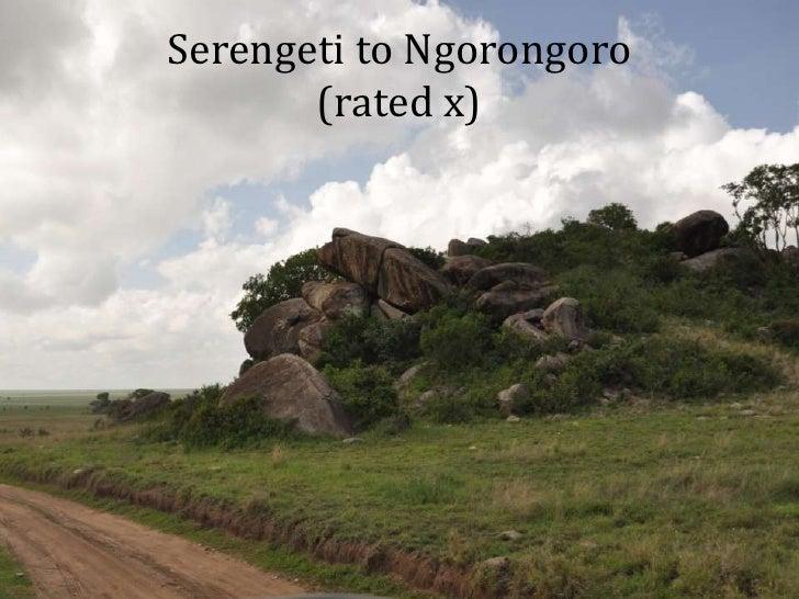 Serengeti to Ngorongoro(rated x)<br />