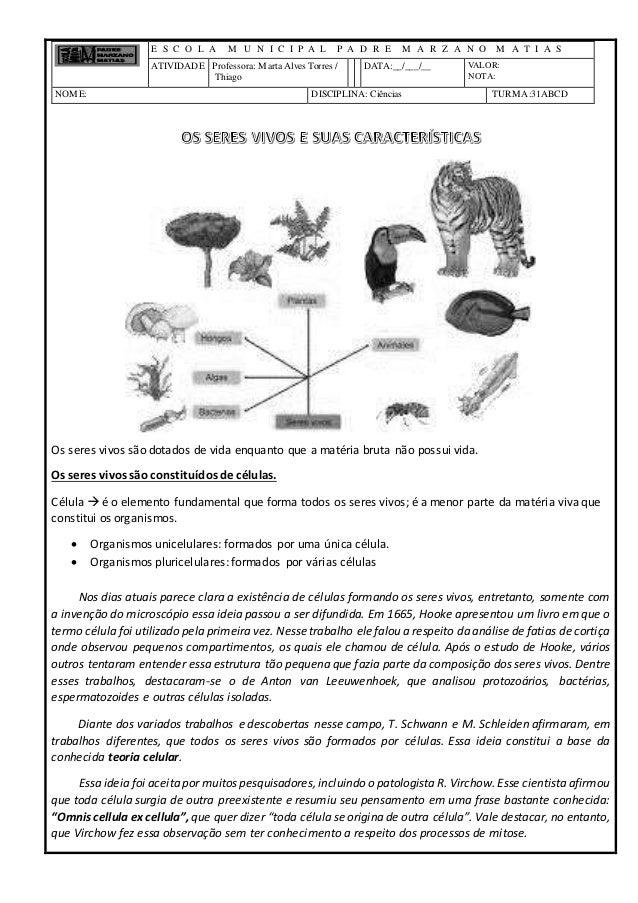E S C O L A M U N I C I P A L P A D R E M A R Z A N O M A T I A S ATIVIDADE Professora: MartaAlves Torres / Thiago DATA:__...