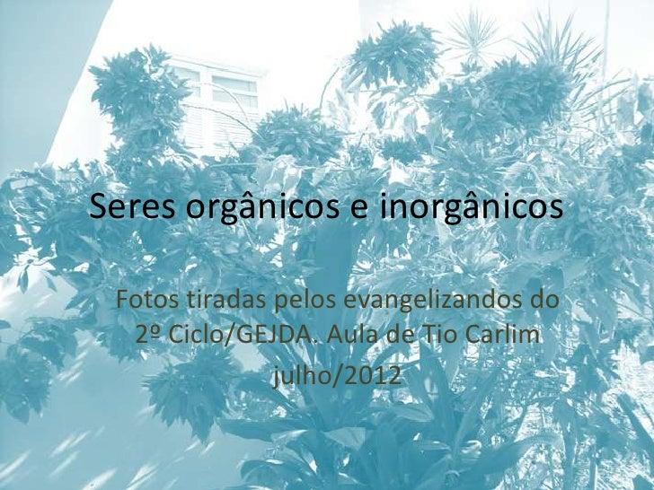 Seres orgânicos e inorgânicos Fotos tiradas pelos evangelizandos do  2º Ciclo/GEJDA. Aula de Tio Carlim               julh...