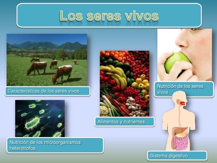 Nutrición de los seres Características de los seres vivos                               vivos                             ...