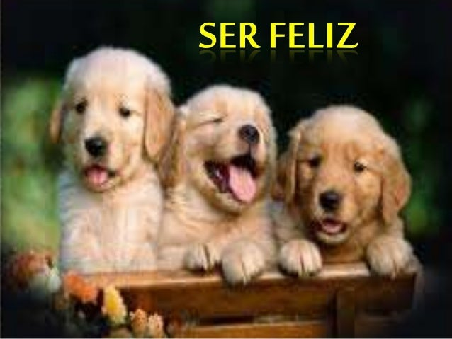 Ser feliz 3