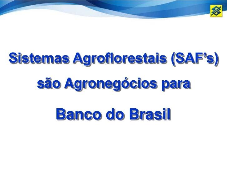 Sistemas Agroflorestais (SAF's)    são Agronegócios para      Banco do Brasil