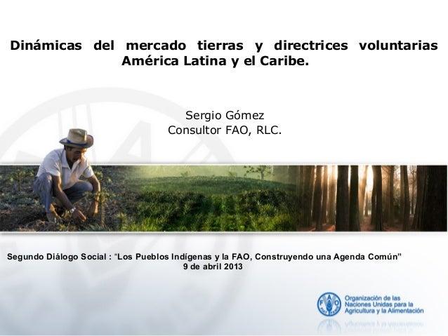 Dinámicas del mercado tierras y directrices voluntarias              América Latina y el Caribe.                          ...