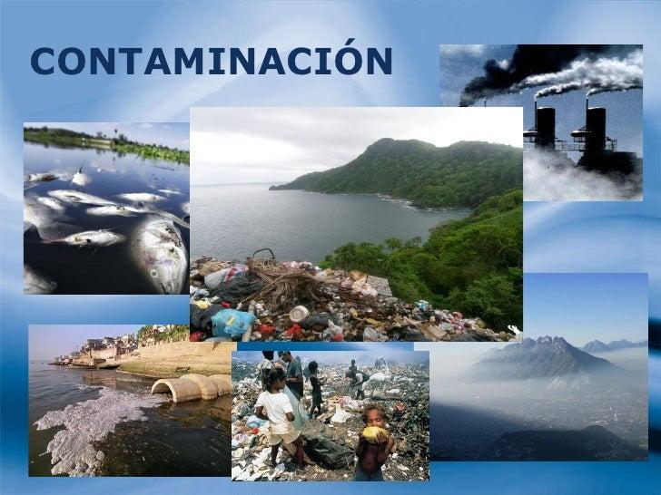 Resultado de imagen para contaminación del ecosistema