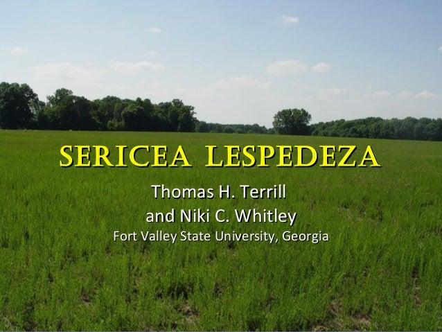 SERICEA LESPEDEZASERICEA LESPEDEZA Thomas H. TerrillThomas H. Terrill and Niki C. Whitleyand Niki C. Whitley Fort Valley S...