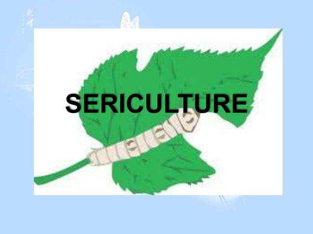 SERICULTURE