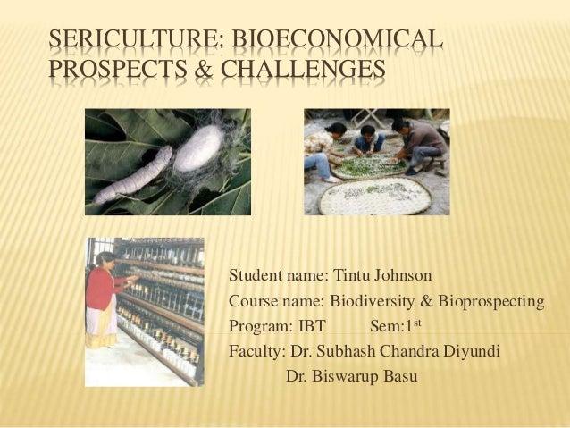 SERICULTURE: BIOECONOMICAL  PROSPECTS & CHALLENGES  Student name: Tintu Johnson  Course name: Biodiversity & Bioprospectin...