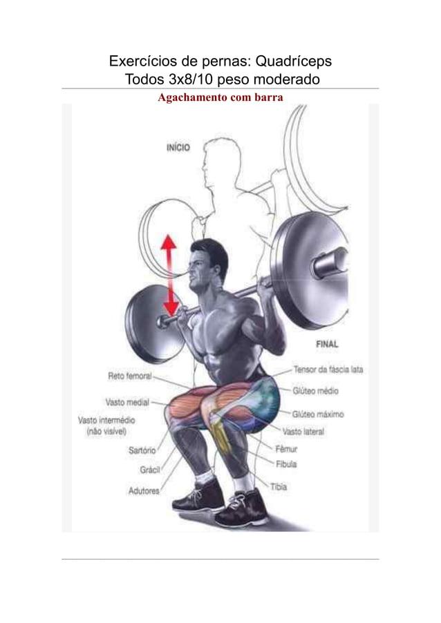 Exercícios de pernas: Quadríceps Todos 3x8/10 peso moderado Agachamento com barra