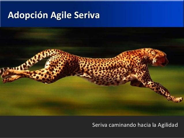 Adopción Agile Seriva  Seriva caminando hacia la Agilidad