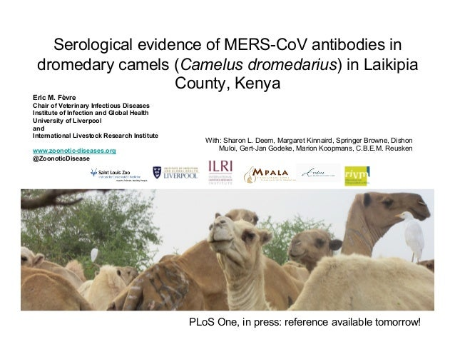 Serological evidence of MERS-CoV antibodies in dromedary camels (Camelus dromedarius) in Laikipia County, Kenya With: Shar...