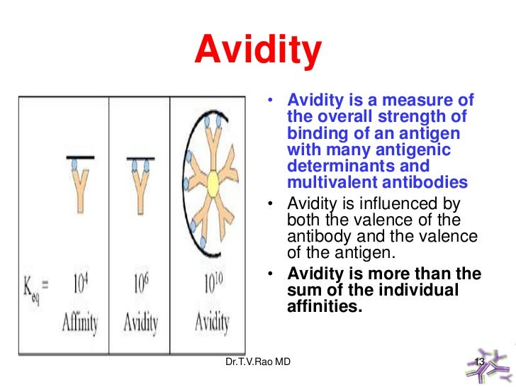 Avidity         • Avidity is a measure of           the overall strength of           binding of an antigen           with...