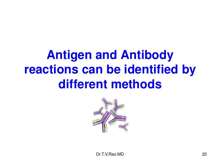 Antigen and Antibodyreactions can be identified by      different methods            Dr.T.V.Rao MD        23
