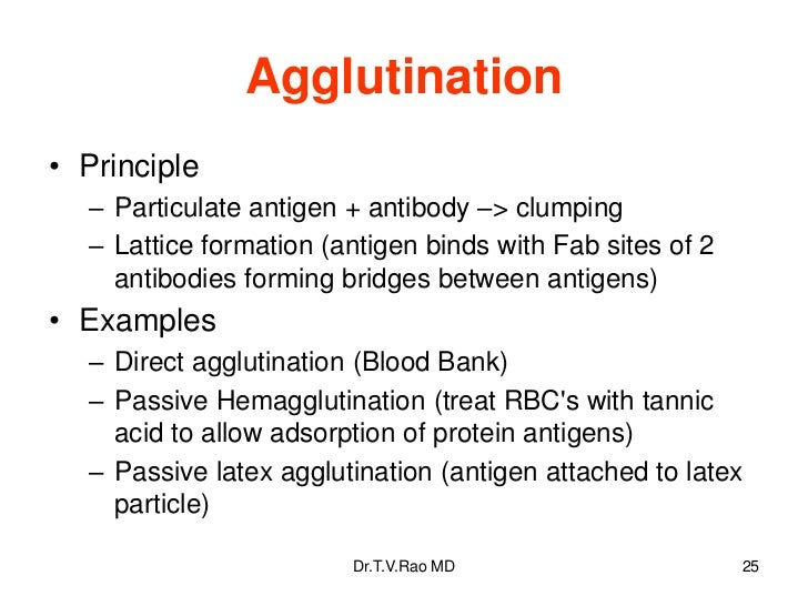 Agglutination• Principle  – Particulate antigen + antibody –> clumping  – Lattice formation (antigen binds with Fab sites ...