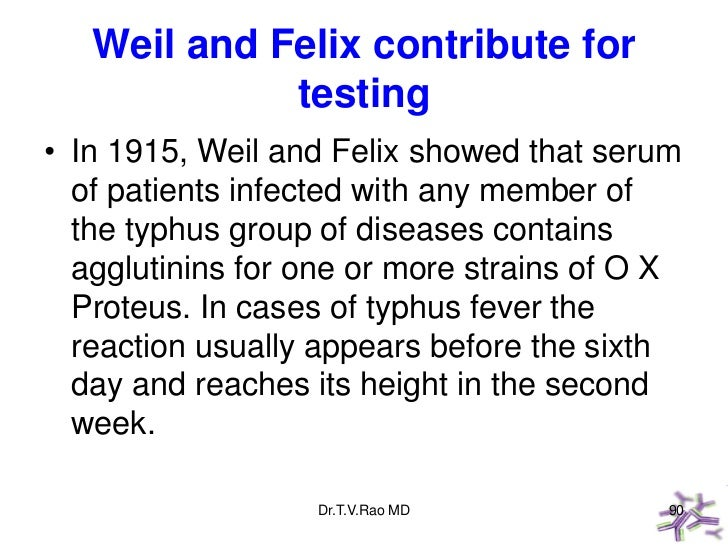 Weil and Felix contribute for             testing• In 1915, Weil and Felix showed that serum  of patients infected with an...
