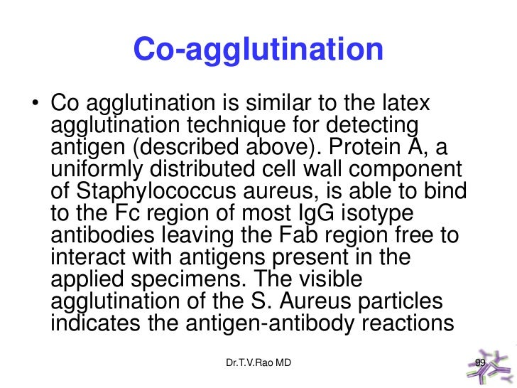 Co-agglutination• Co agglutination is similar to the latex  agglutination technique for detecting  antigen (described abov...