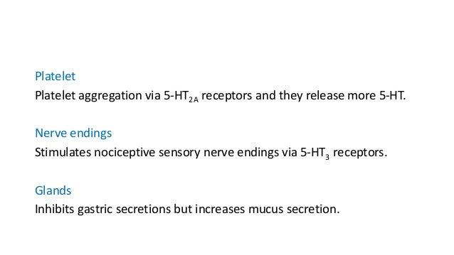 5-Hydroxytryptamine Receptors Seven families of 5-HT receptors (5-HT1, 5-HT2, 5-HT3, 5-HT4, 5-HT5, 5-HT6, 5-HT7 )