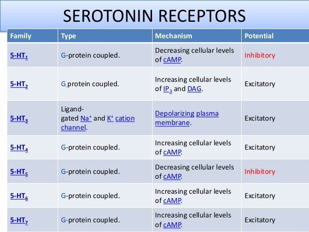 action serotonin functions Choose from 500 different sets of neurotransmitters functions flashcards on quizlet  serotonin function  enables muscle action,.
